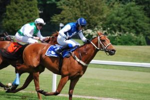 Live, Online Betting on Horse Races